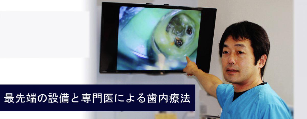 新宿、中野の根管治療 – 歯内療法専門医